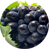 fruit material grapes