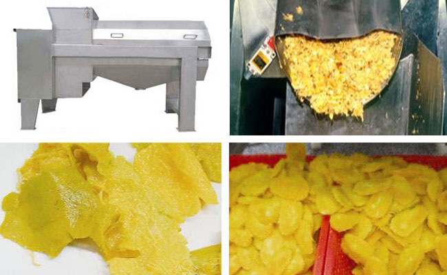mango pulping machine effect
