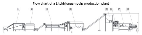 litchi and longan pulp production plant