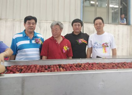 A litchi processing line was sold to Hainan Luqiao Group