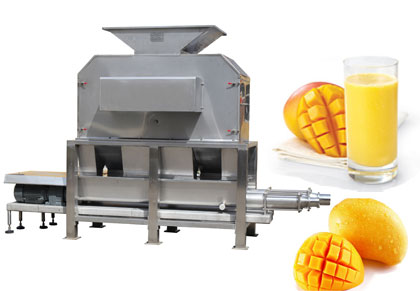 Mango juice production line